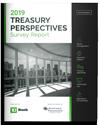 2019 Treasury Perspectives