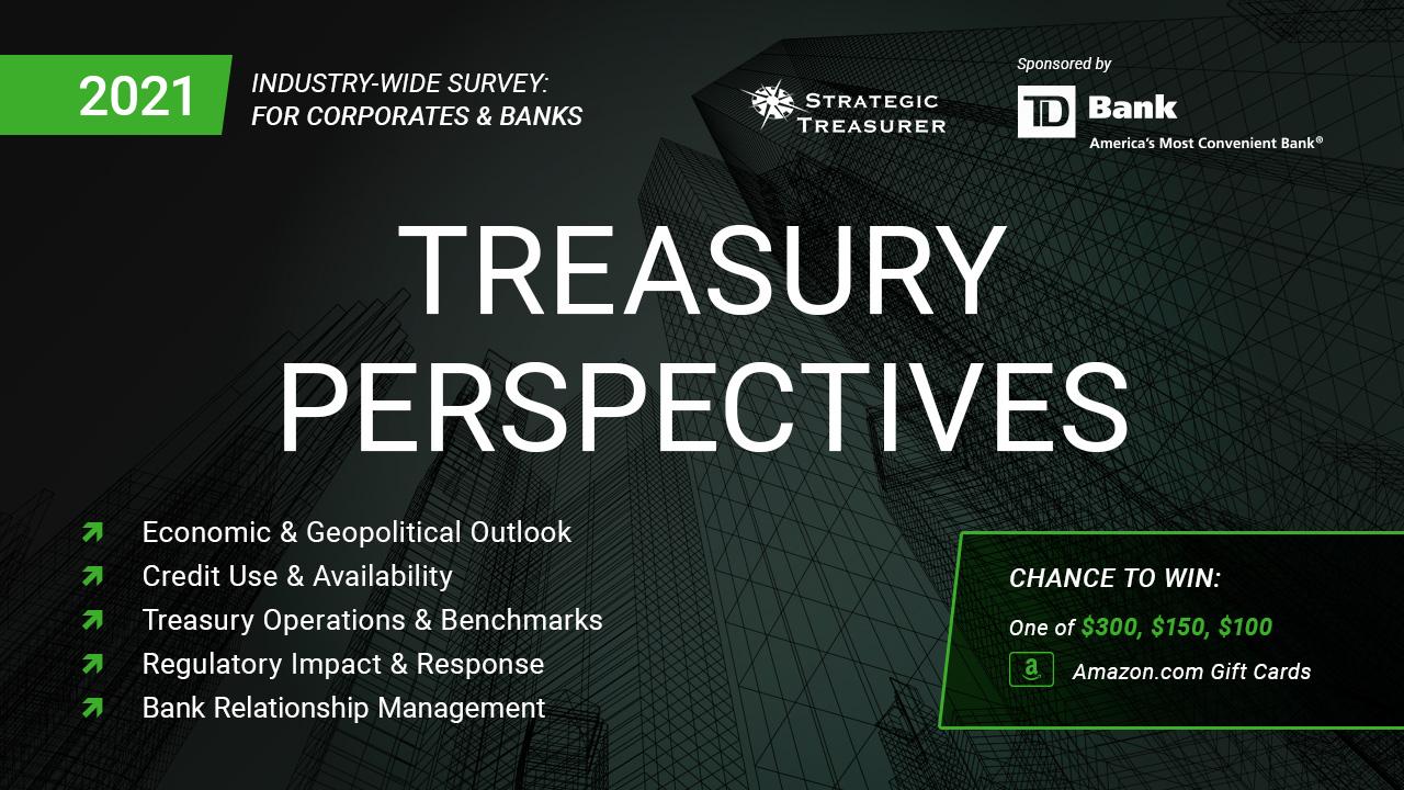 2021 Treasury Perspectives Survey