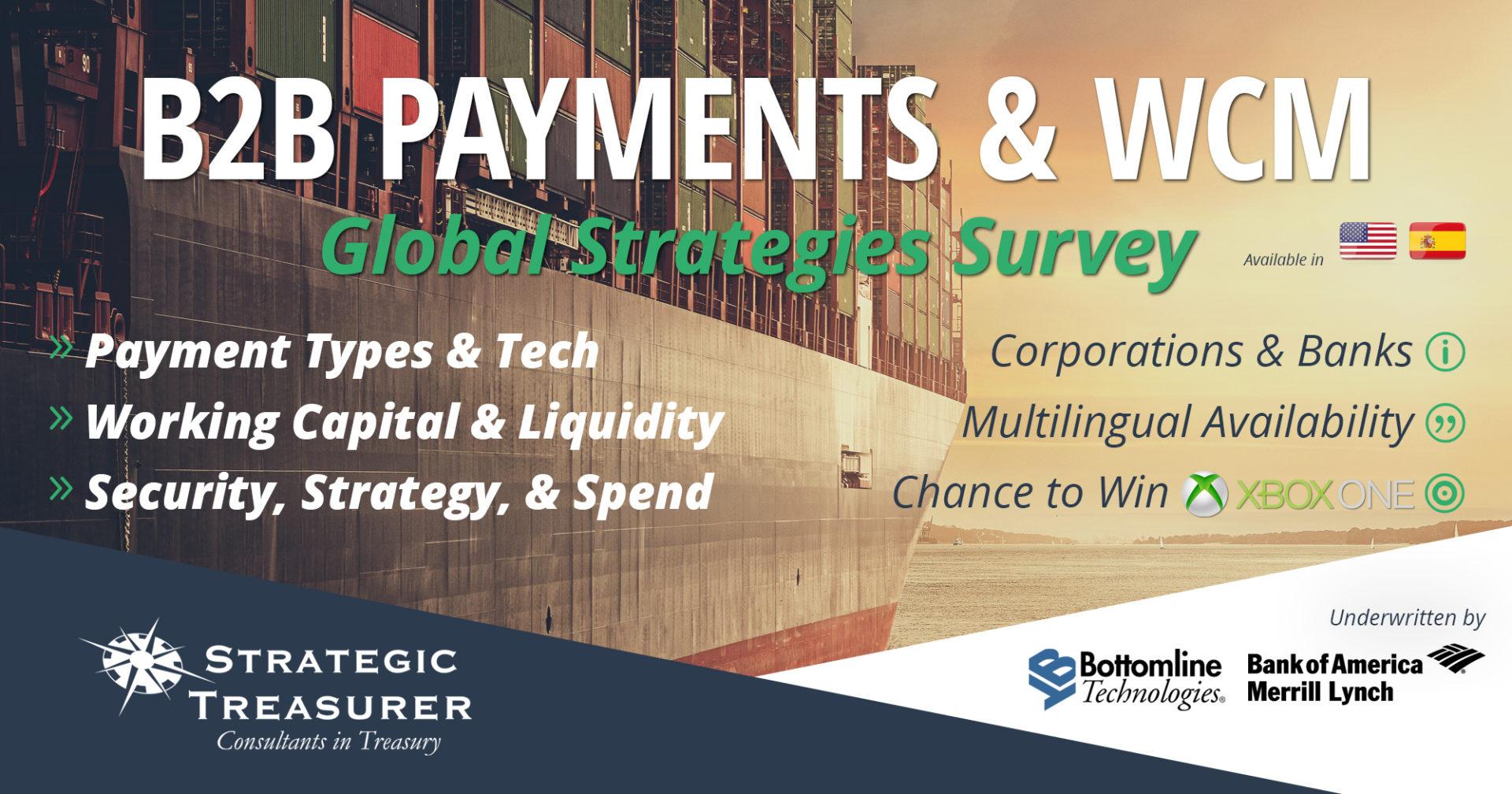 2017 B2B Payments & Working Capital Management Survey