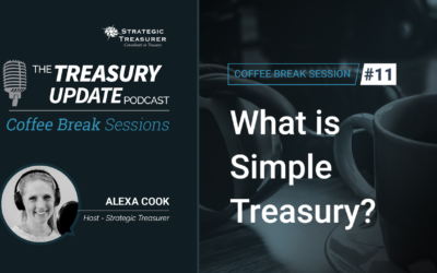 11: What is Simple Treasury?