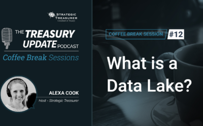 12: What is a Data Lake?