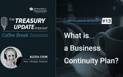 13: What is a Business Continuity Plan?