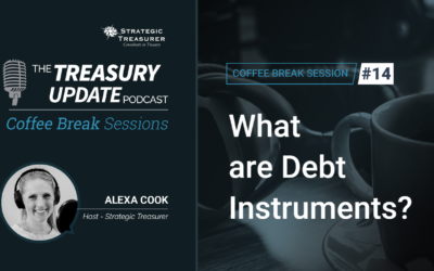 14: What are Debt Instruments?
