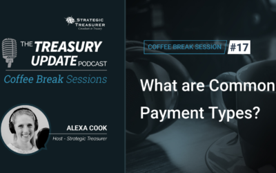 17: What are Common Payment Types?