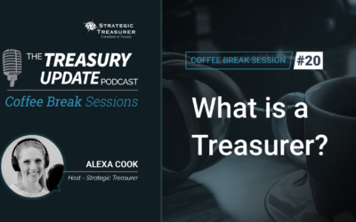 20: What Is a Treasurer?