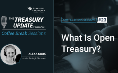 23: What Is Open Treasury?