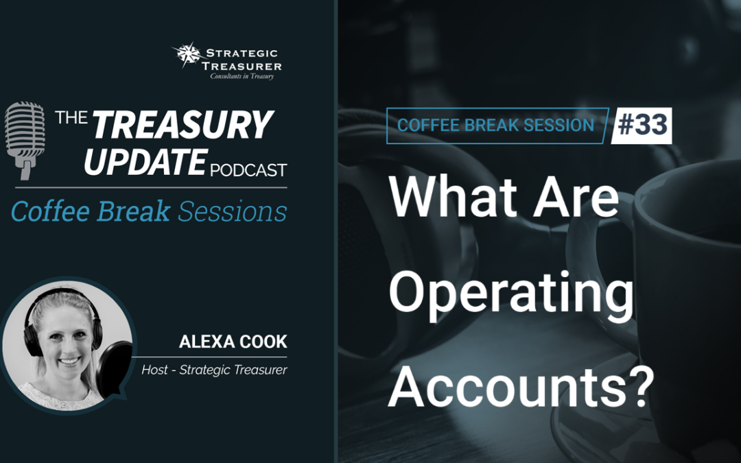 33: What Are Operating Accounts?