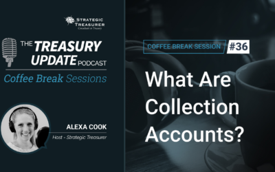 36: What Are Collection Accounts?