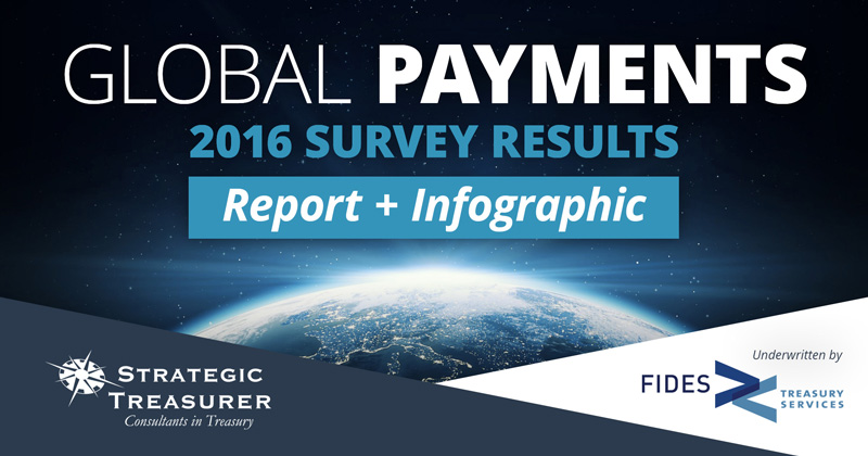 2016 Global Payments Survey Report + Infographic