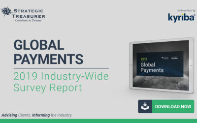 2019 Global Payments Survey