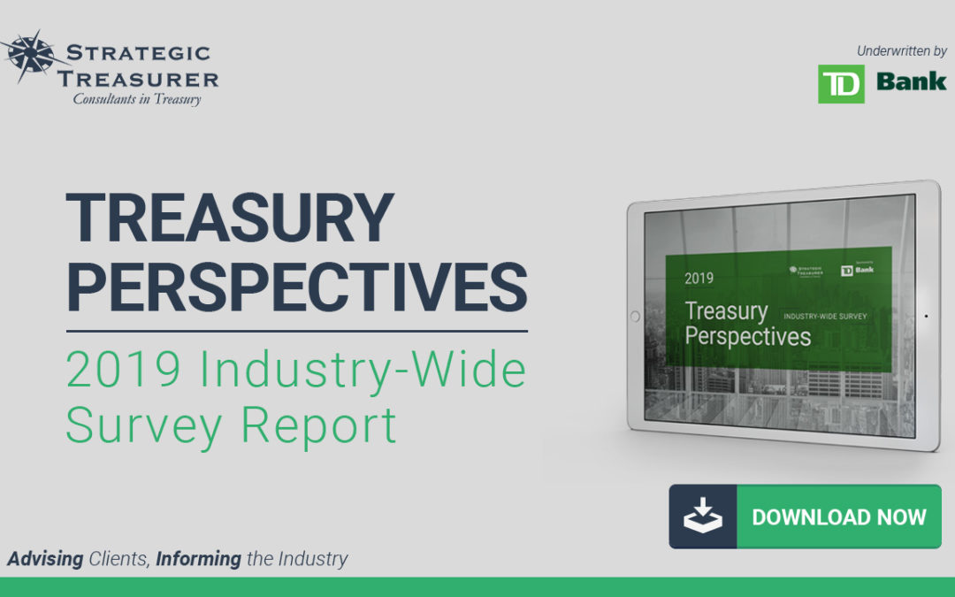 2019 Treasury Perspectives Survey