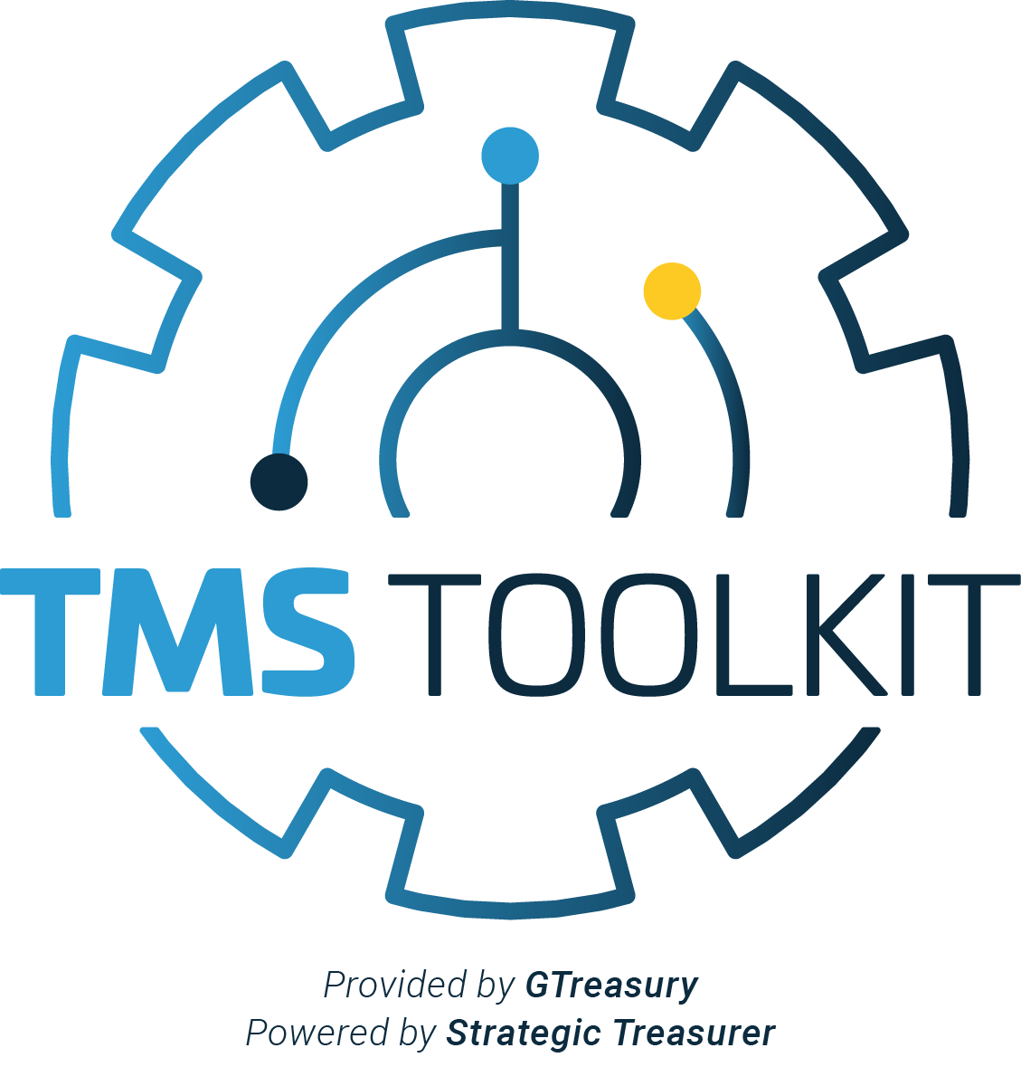 TMS Toolkit Logo