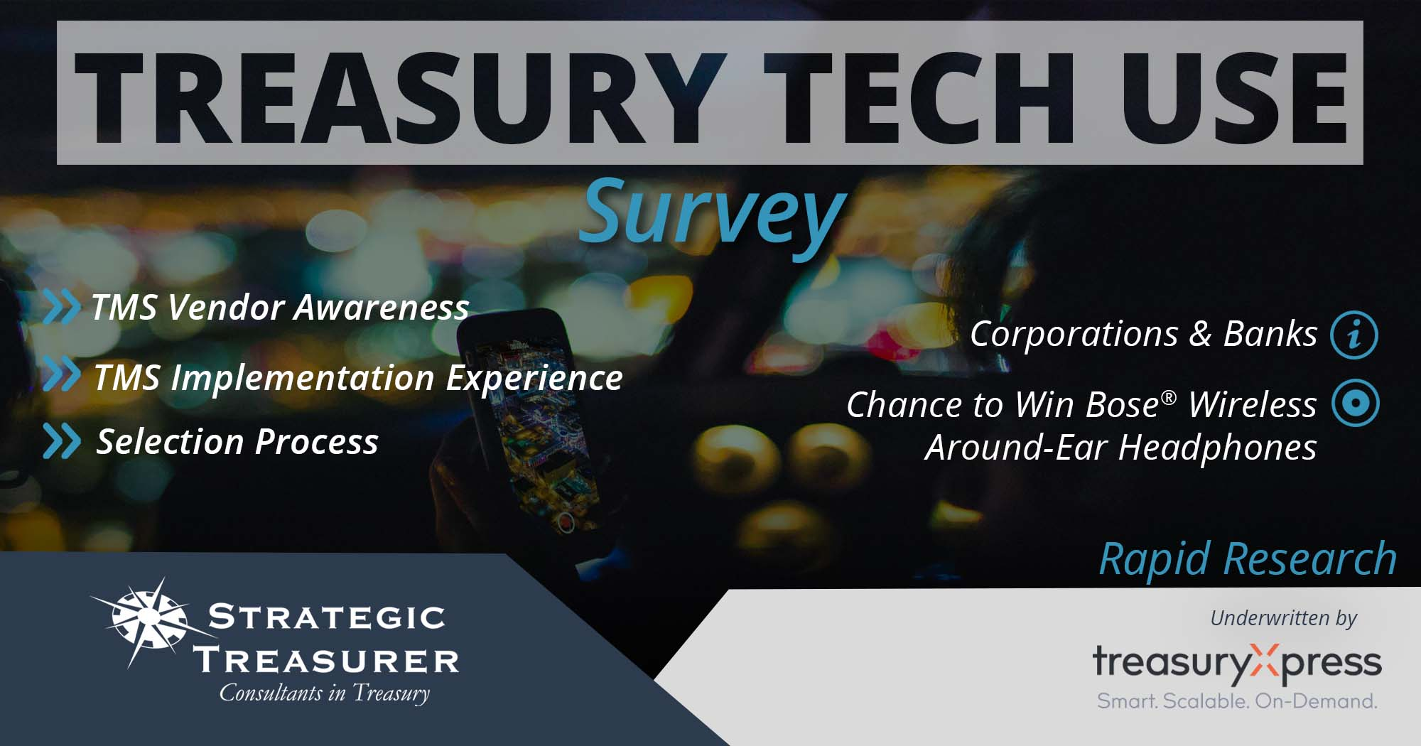 2017 Treasury Fraud & Controls Survey