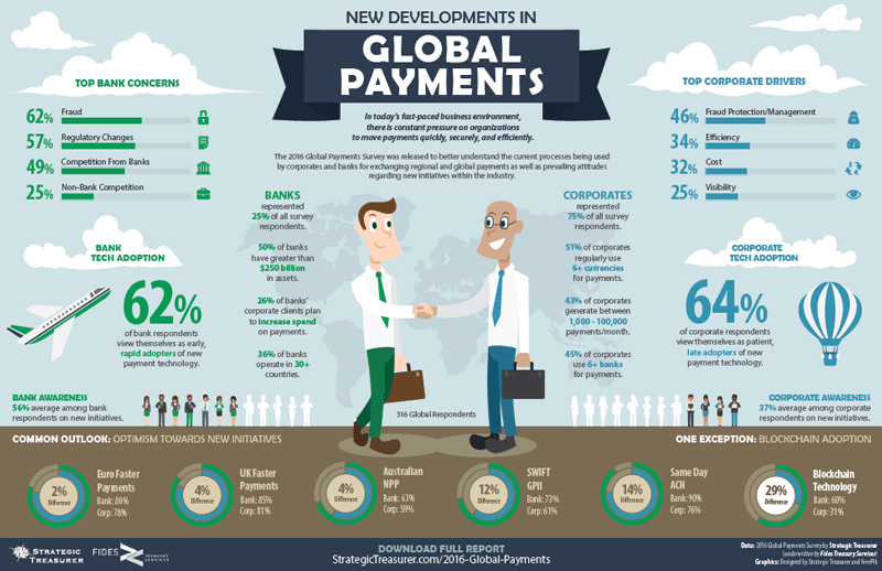 2016 Global Payments Survey Infographic